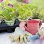 Nützliche Helfer für den Garten