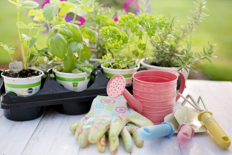 Helfer für den Garten